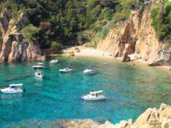 Nuevo impulso al chárter en Baleares. Entra en vigor el Decreto balear que regula la actividad del alquiler de embarcaciones de recreo